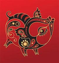 Kineski horoskop – Svinja