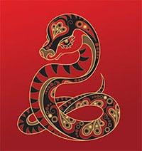 Kineski horoskop – Zmija