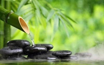 Quantum meditacija