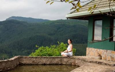 Meditacija alfa stanje